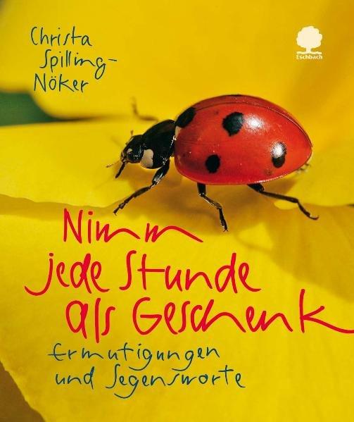 Nimm jede Stunde als Geschenk als Buch von Christa Spilling-Nöker