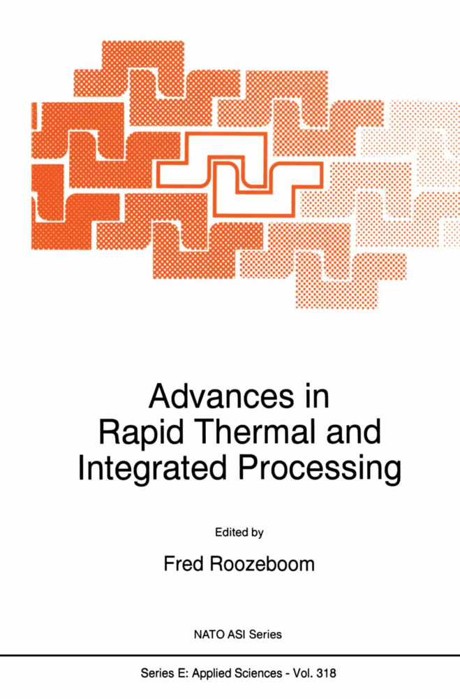 Advances in Rapid Thermal and Integrated Processing als Buch von - Springer Netherlands