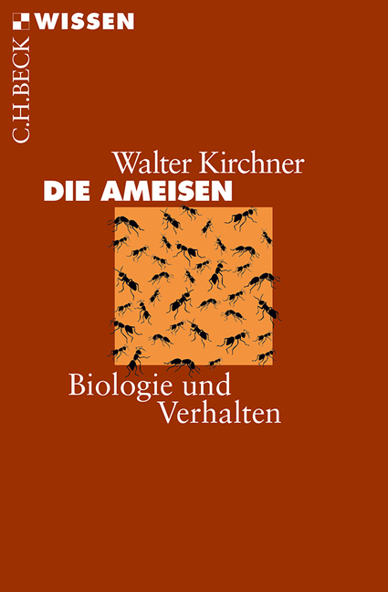 Die Ameisen als Taschenbuch von Walter Kirchner