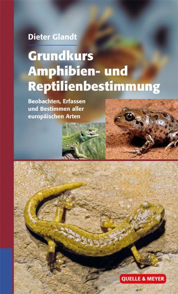 Grundkurs Amphibien- und Reptilienbestimmung als Buch von Dieter Glandt