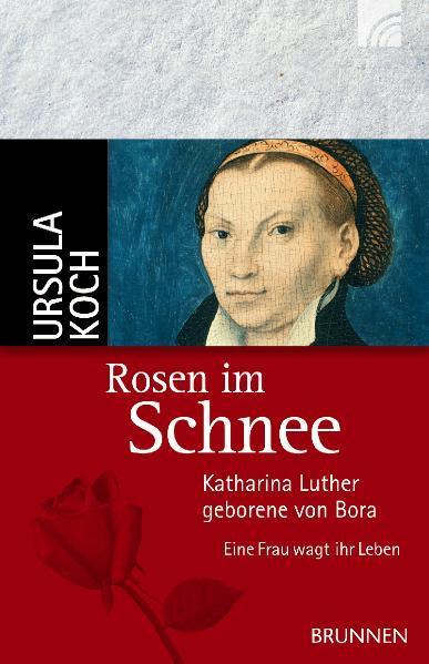 Rosen im Schnee als Taschenbuch von Ursula Koch