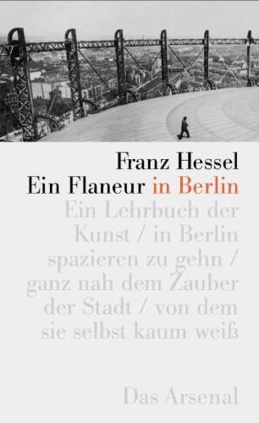 Ein Flaneur in Berlin als Buch von Franz Hessel