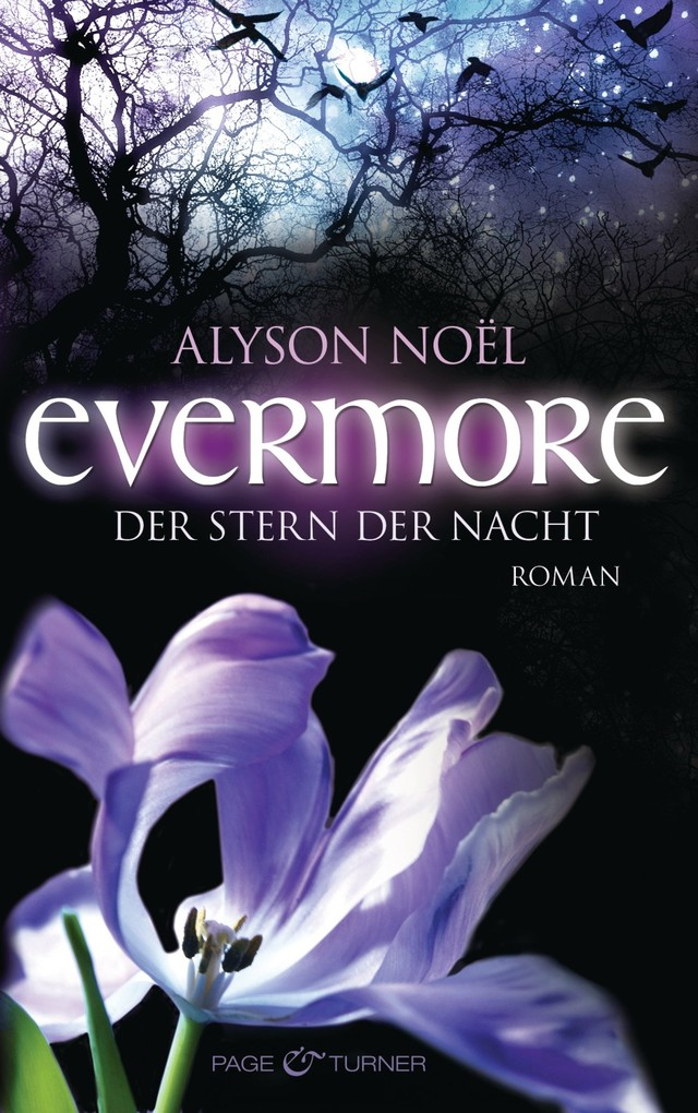 Evermore 05 - Der Stern der Nacht als eBook von Alyson Noël
