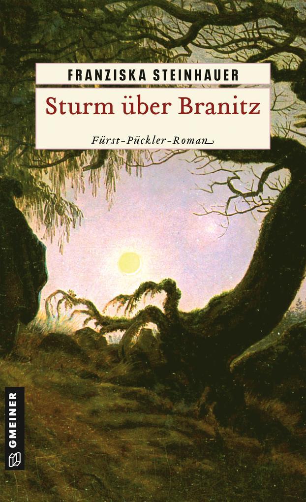 Sturm über Branitz als Taschenbuch von Franziska Steinhauer