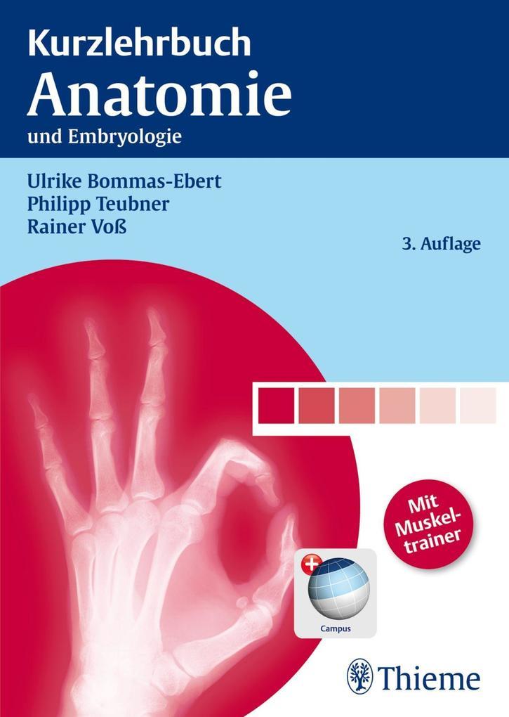 Kurzlehrbuch Anatomie als Buch von Ulrike Bommas-Ebert, Philipp Teubner, Rainer Voß