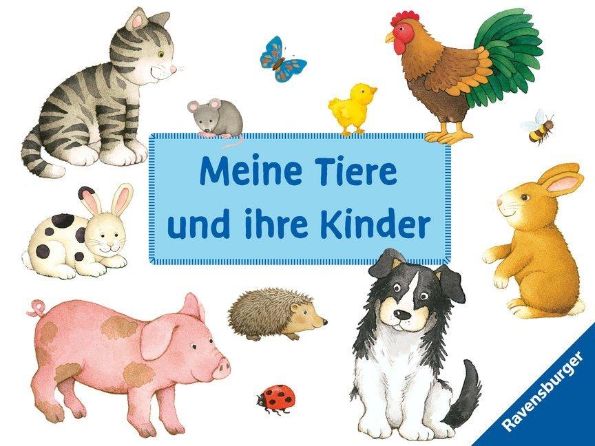 Meine Tiere und ihre Kinder als Buch von Sandra Grimm