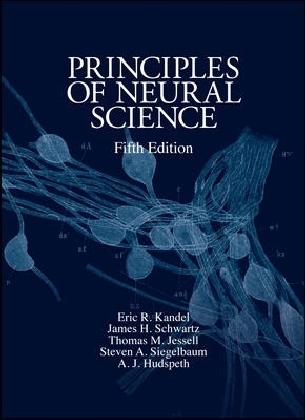 Principles of Neural Science als Buch von Eric R. Kandel, James H. Schwartz, Thomas M. Jessell, Steven A. Siegelbaum, A.