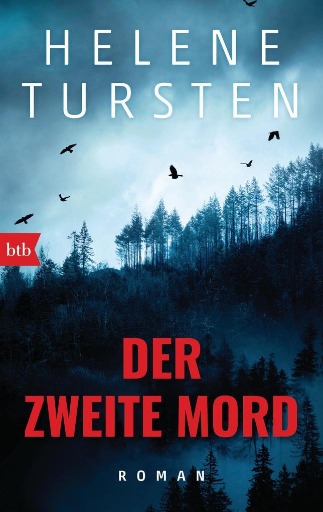 Der zweite Mord als eBook von Helene Tursten