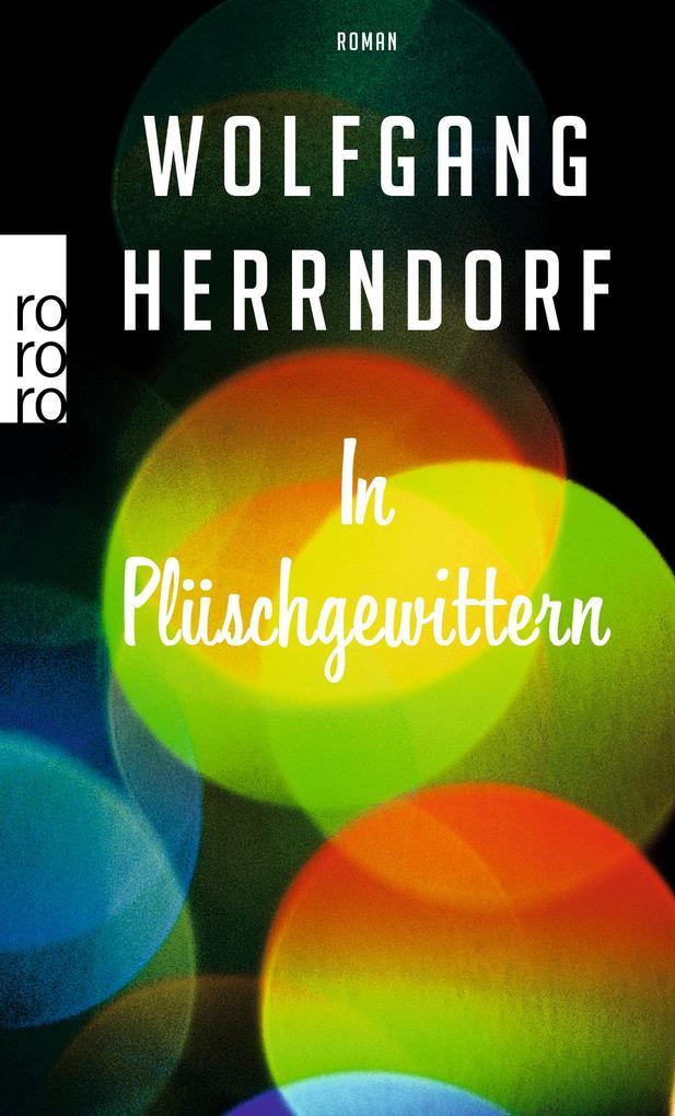 In Plüschgewittern als Taschenbuch von Wolfgang Herrndorf