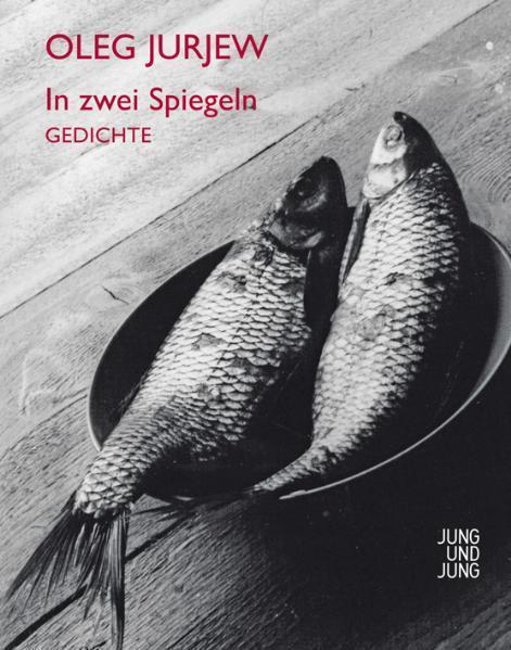 In zwei Spiegeln als Buch von Oleg Jurjew, Ilma Rakusa
