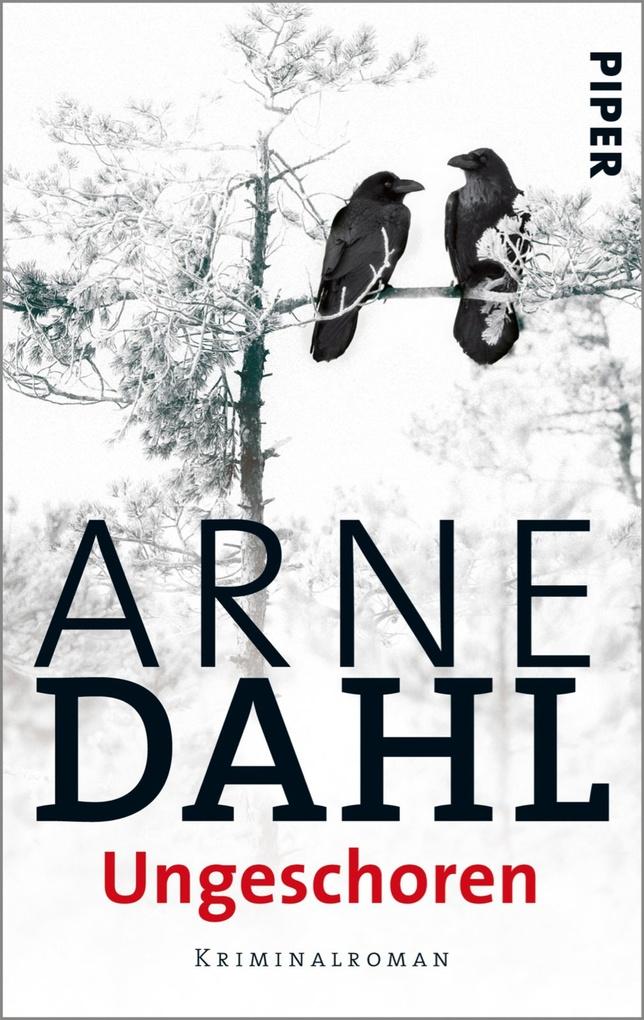 Ungeschoren als eBook von Arne Dahl