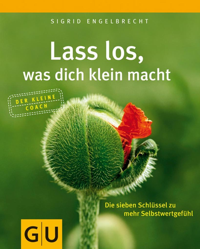 Lass los, was dich klein macht als eBook von Sigrid Engelbrecht
