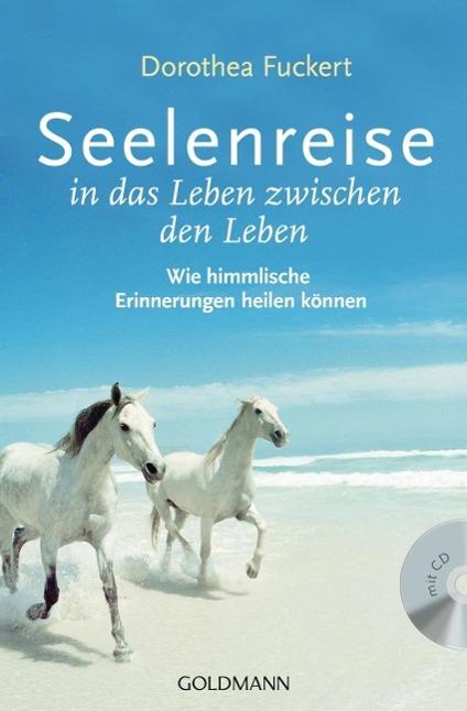 Seelenreise in das Leben zwischen den Leben als Taschenbuch von Dorothea Fuckert