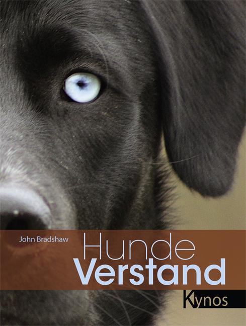 Hundeverstand als Buch von John Bradshaw