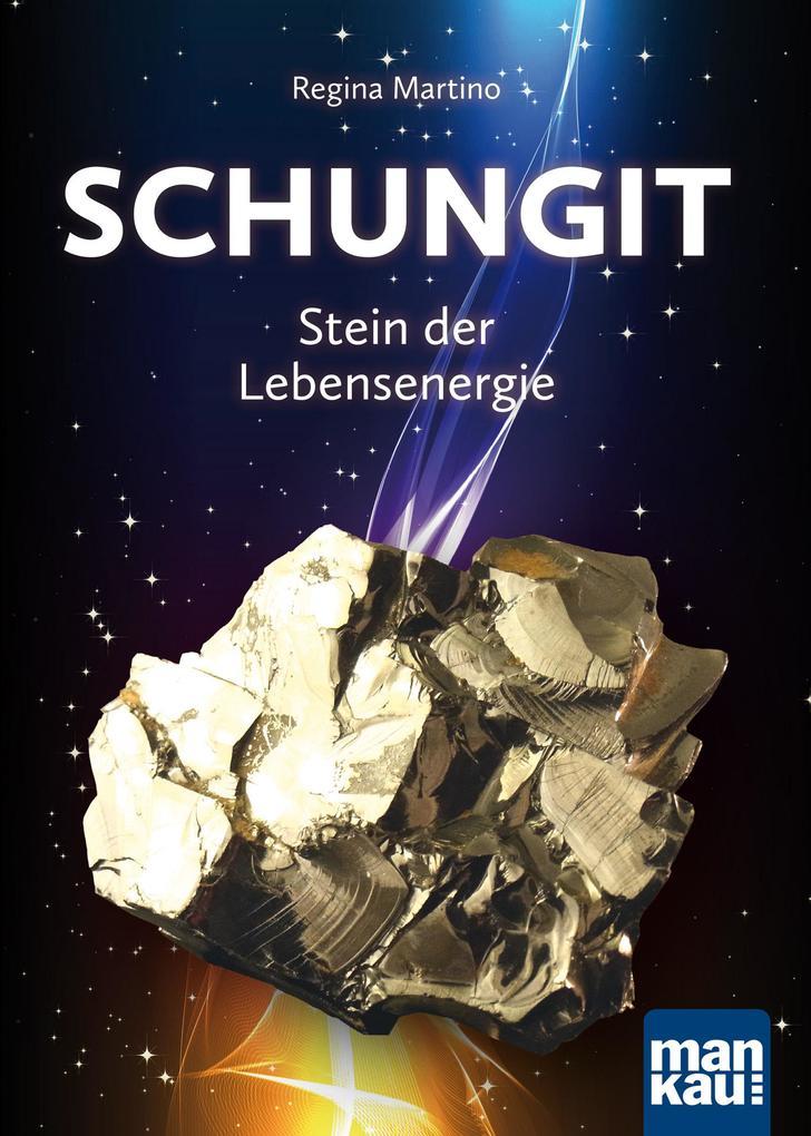 Schungit - Stein der Lebensenergie als Buch von Regina Martino