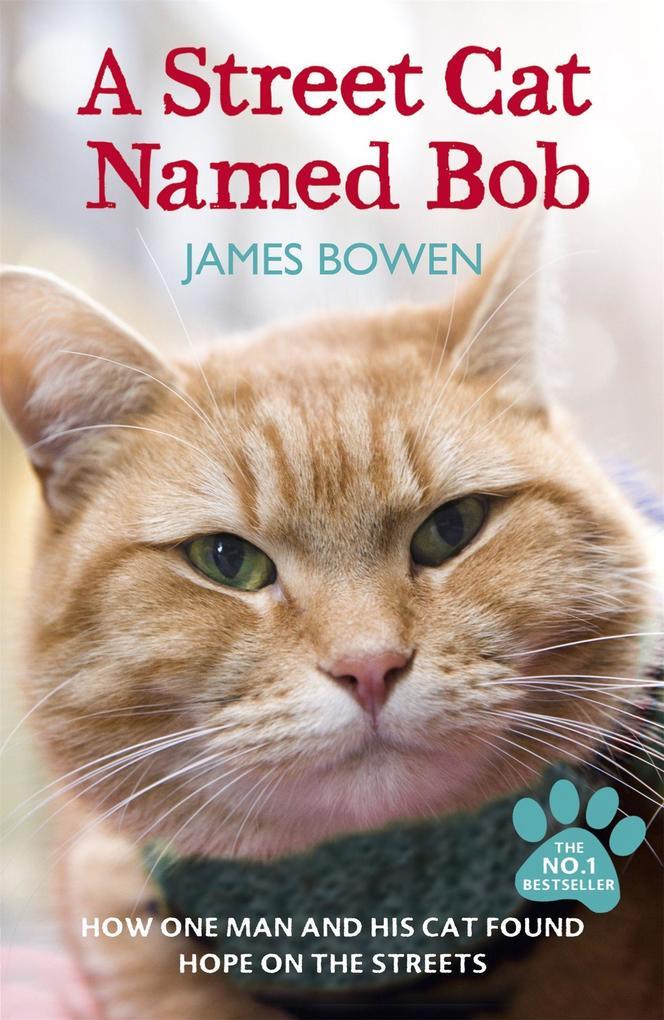 A Street Cat Named Bob als Taschenbuch von James Bowen