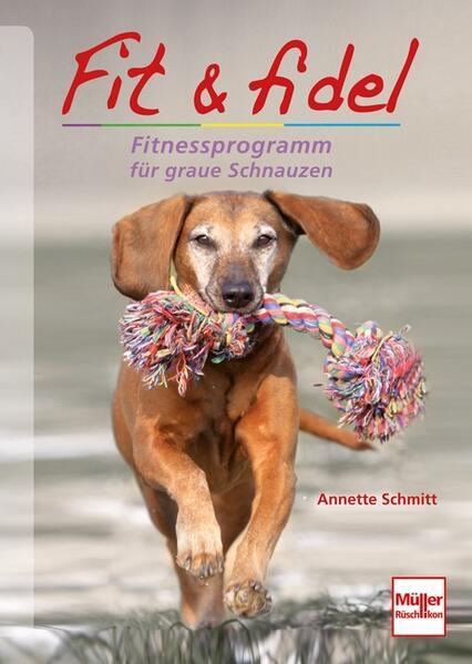Fit & fidel als Buch von Annette Schmitt