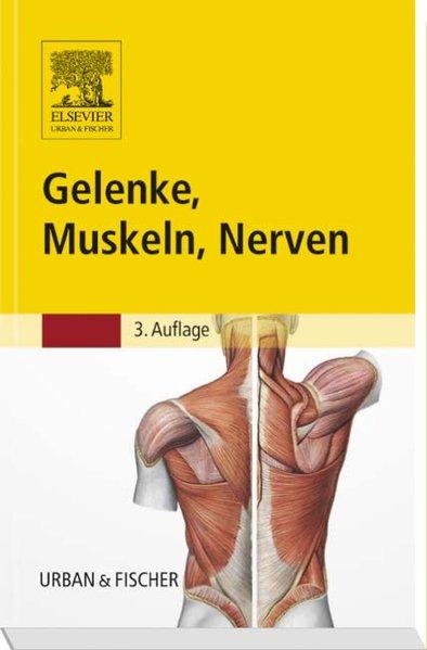 Gelenke, Muskeln, Nerven als Buch von Reinhard Eggers