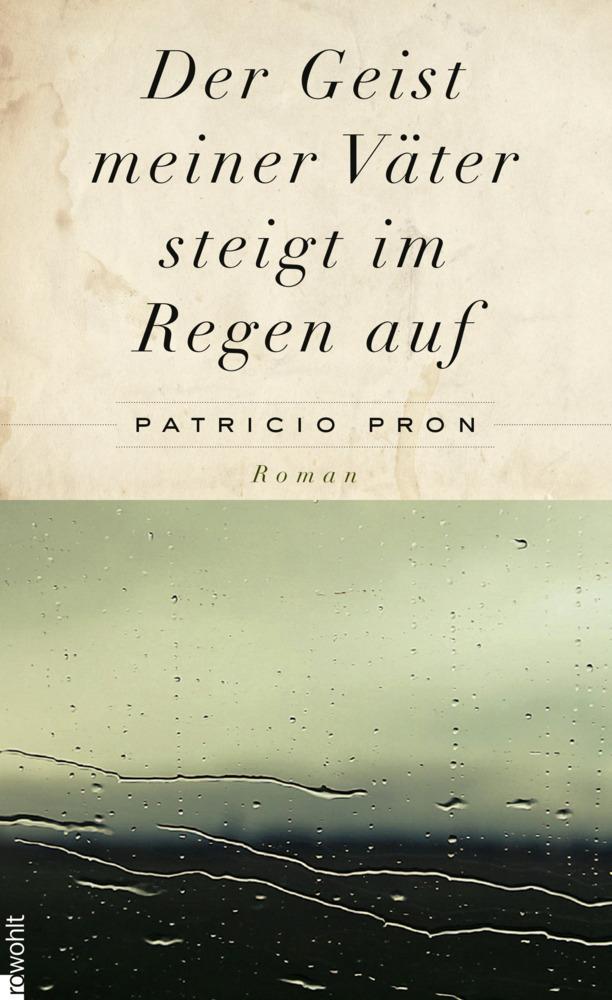 Der Geist meiner Väter steigt im Regen auf als Buch von Patricio Pron