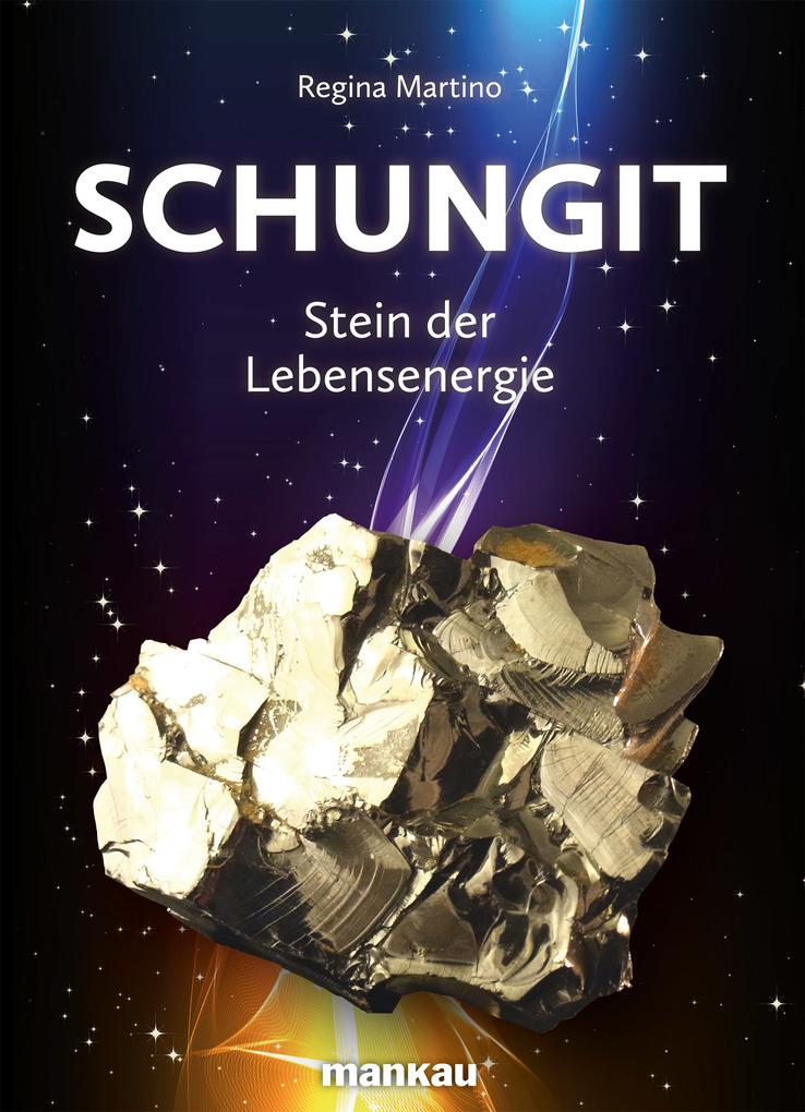 Schungit - Stein der Lebensenergie als eBook von Regina Martino