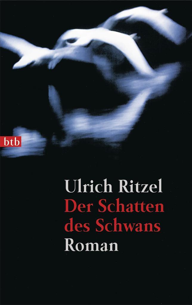 Der Schatten des Schwans als eBook von Ulrich Ritzel