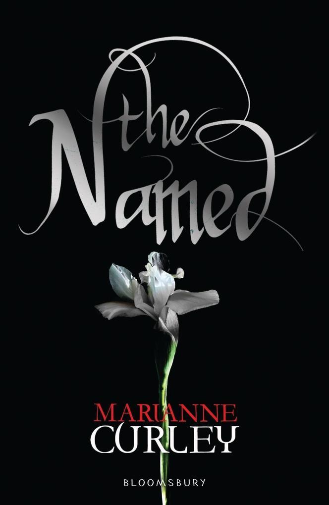 The Named als eBook von Marianne Curley