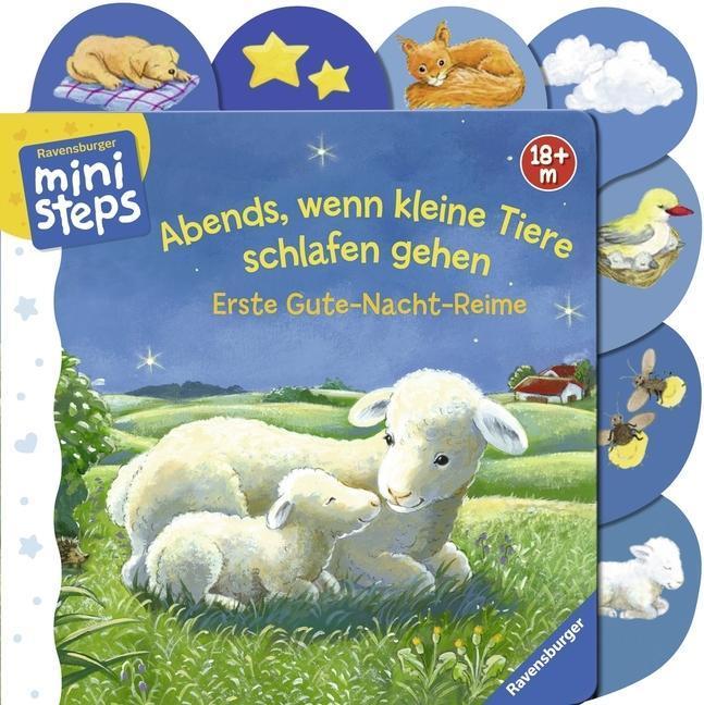 Abends, wenn kleine Tiere schlafen gehen als Buch von Sabine Cuno