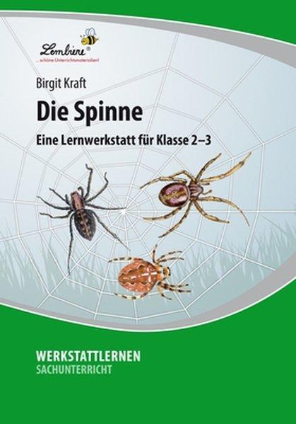 Die Spinne (PR) als Buch von Birgit Kraft