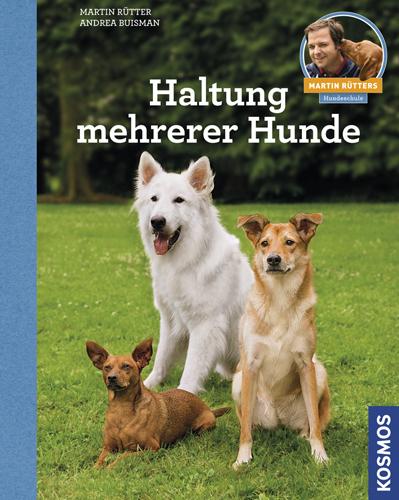 Haltung mehrerer Hunde als Buch von Martin Rütter, Andrea Buisman