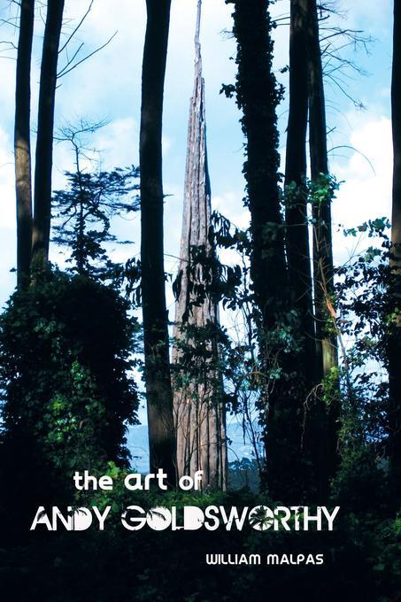 The Art of Andy Goldsworthy als Taschenbuch von William Malpas