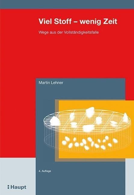 Viel Stoff - wenig Zeit als Buch von Martin Lehner