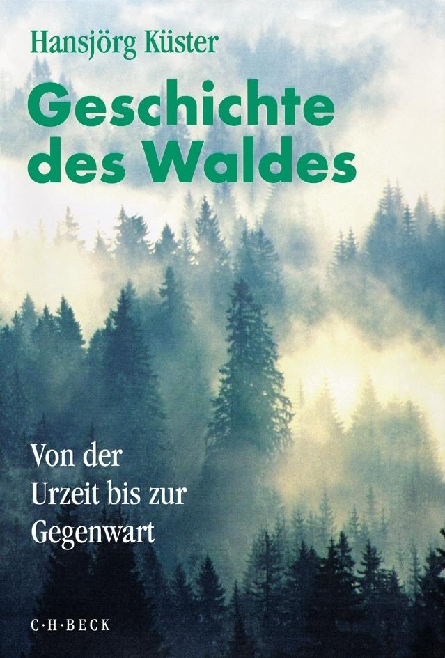Geschichte des Waldes. Sonderausgabe als Buch von Hansjörg Küster