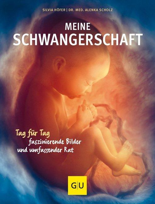 Meine Schwangerschaft als Buch von Alenka Scholz, Silvia Höfer
