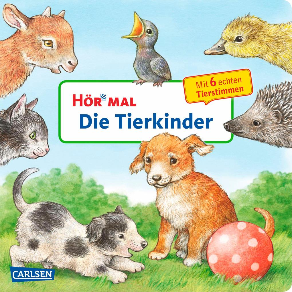 Hör mal: Die Tierkinder als Buch von Anne Möller