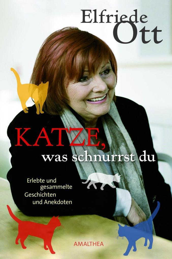 Katze, was schnurrst du als Buch von Elfriede Ott