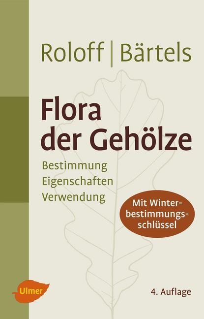 Flora der Gehölze als Buch von Andreas Roloff, Andreas Bärtels
