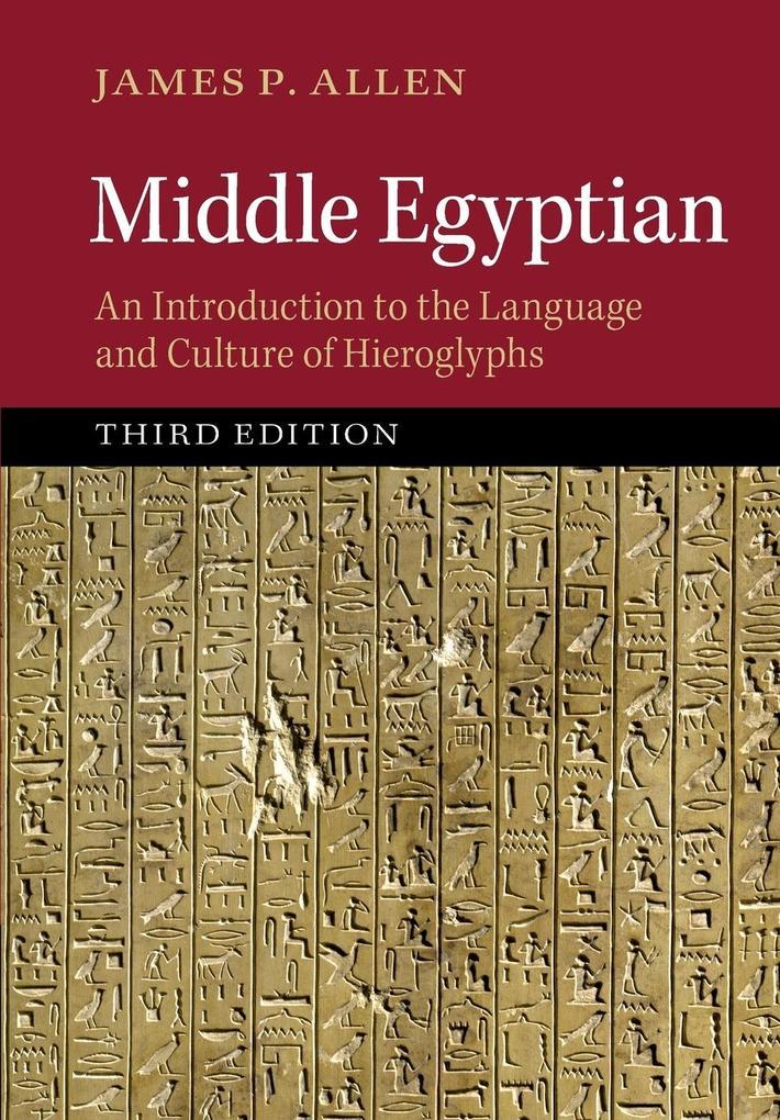 Middle Egyptian als Buch von James P. Allen