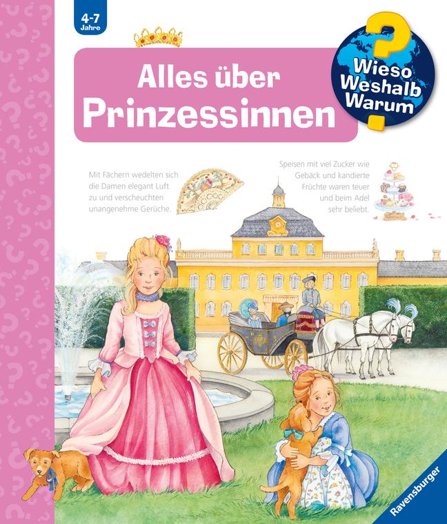 Alles über Prinzessinnen als Buch von Andrea Erne