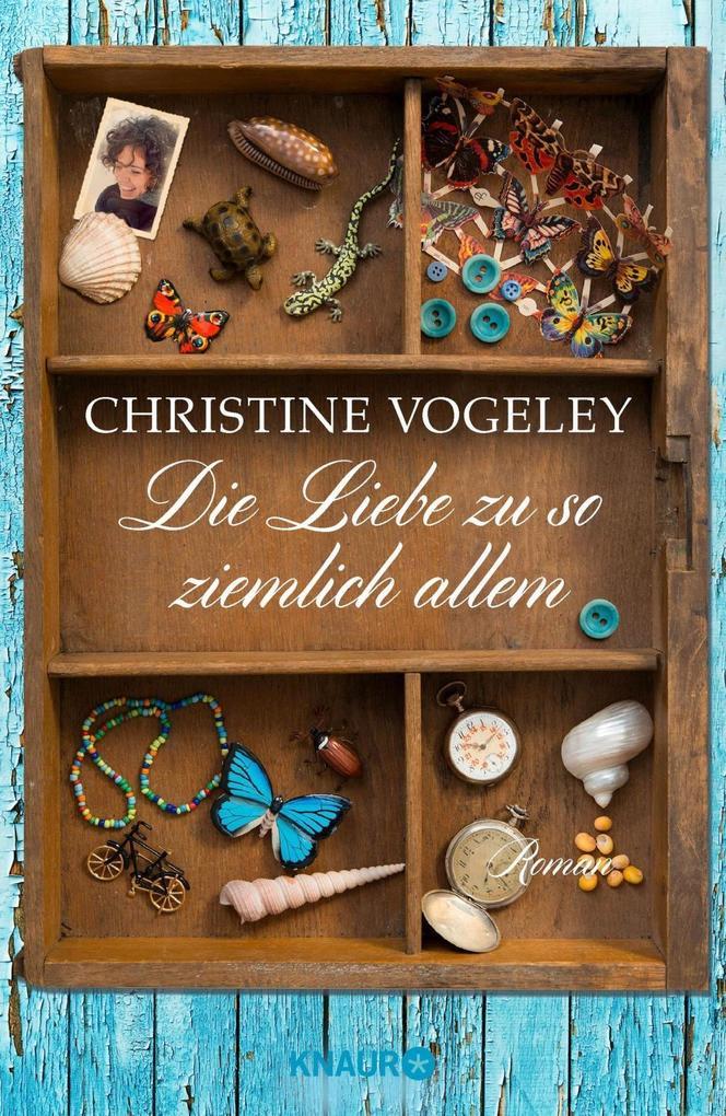 Die Liebe zu so ziemlich allem als Buch von Christine Vogeley
