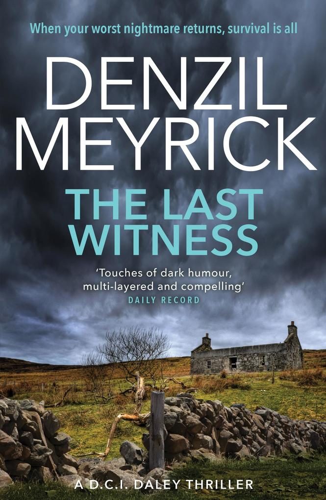 The Last Witness als eBook von Denzil Meyrick