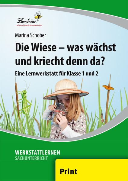 Die Wiese - was wächst und kriecht denn da? (PR) als Buch von Marina Schober