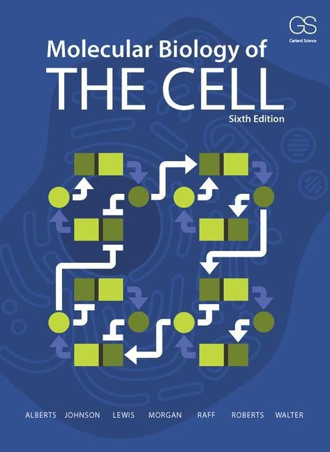 Molecular Biology of the Cell als Taschenbuch von Bruce Alberts, Alexander Johnson, Julian Lewis, David Morgan, Martin R