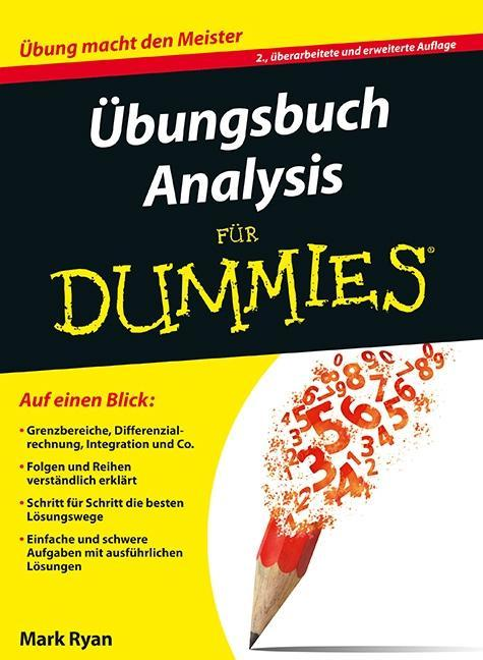 Übungsbuch Analysis als Buch von Mark Ryan