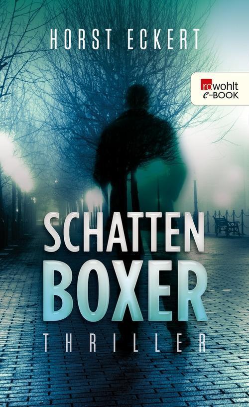 Schattenboxer als eBook von Horst Eckert