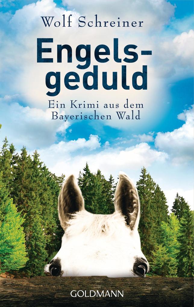 Engelsgeduld als Taschenbuch von Wolf Schreiner