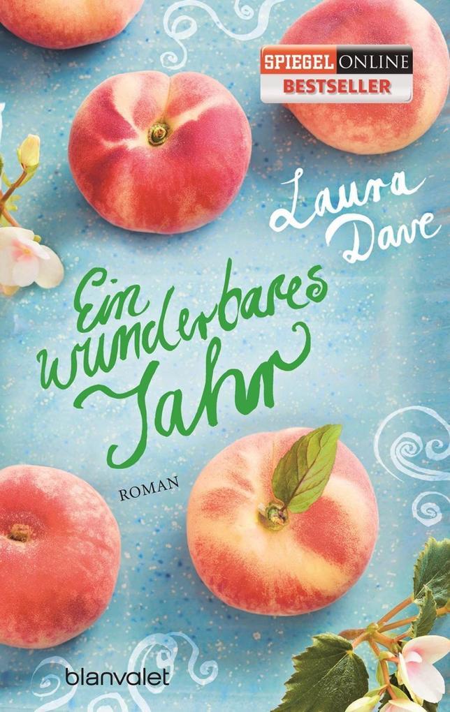 Ein wunderbares Jahr als Taschenbuch von Laura Dave