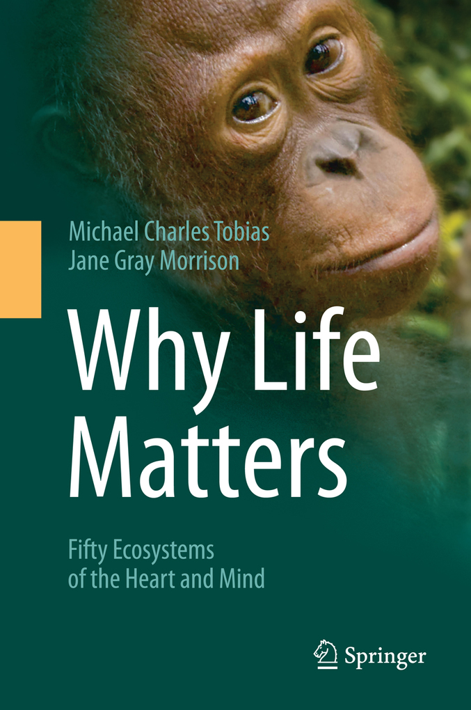 Why Life Matters als eBook von Michael Charles ...
