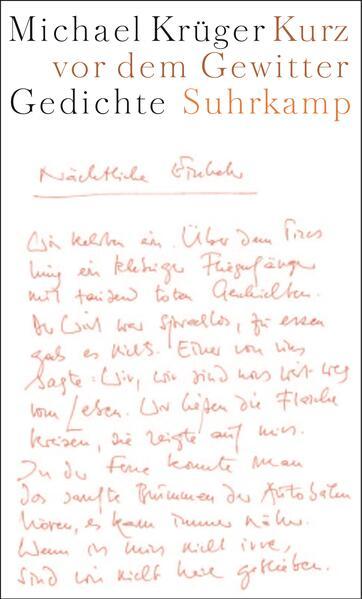 Kurz vor dem Gewitter als Buch von Michael Krüger