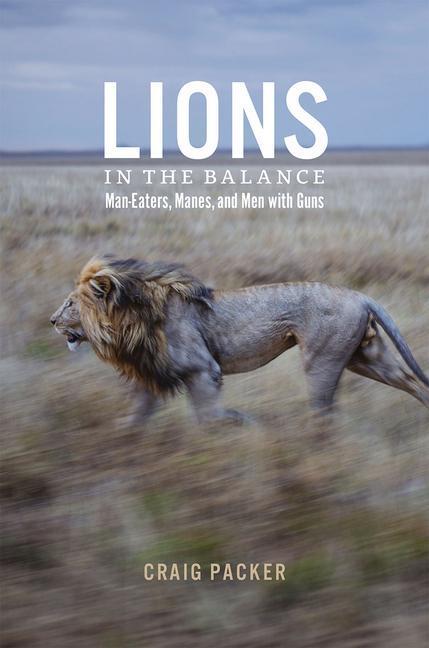 Lions in the Balance als Buch von Craig Packer