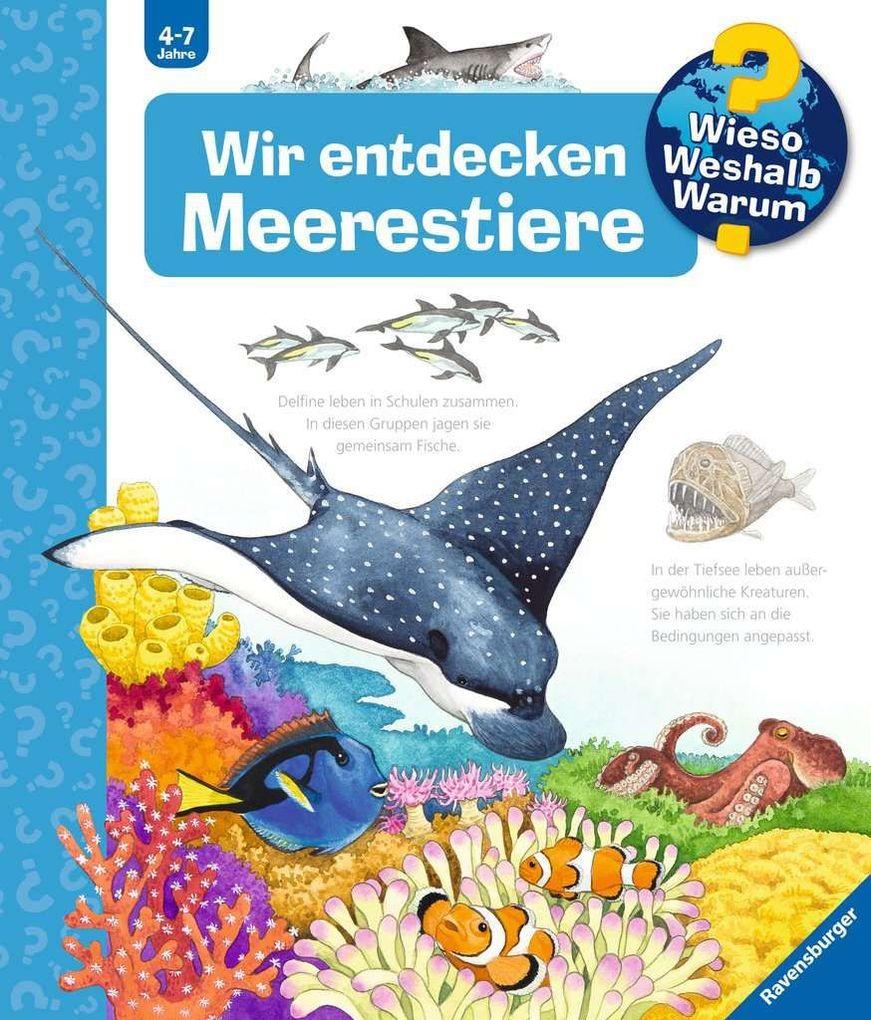 Wir entdecken Meerestiere als Buch von Andrea Erne